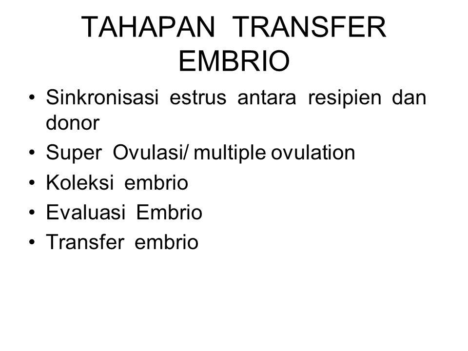 TAHAPAN TRANSFER EMBRIO Sinkronisasi estrus antara resipien dan donor Super Ovulasi/ multiple ovulation Koleksi embrio Evaluasi Embrio Transfer embrio