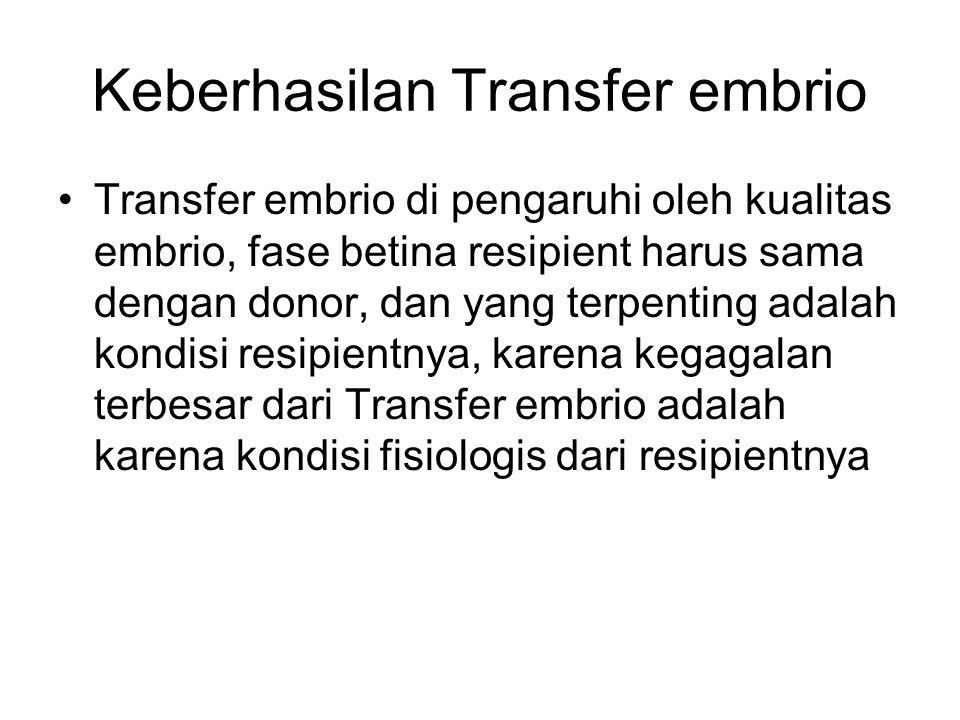Keberhasilan Transfer embrio Transfer embrio di pengaruhi oleh kualitas embrio, fase betina resipient harus sama dengan donor, dan yang terpenting ada