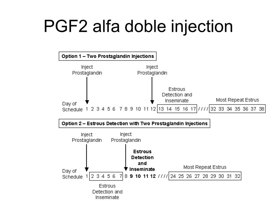 PGF2 alfa doble injection