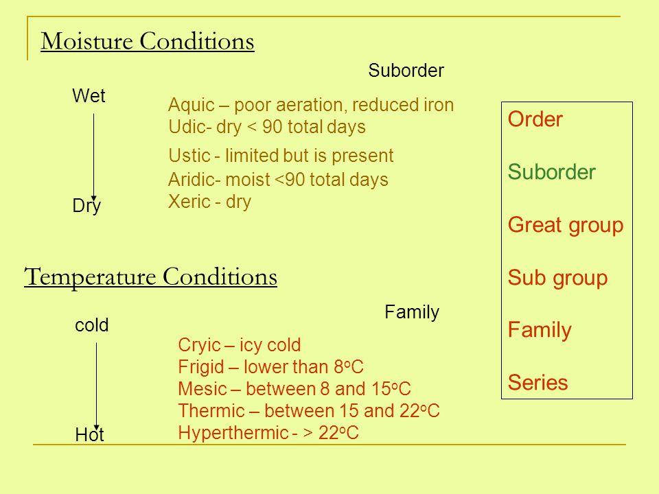1.Entisols -recent No diagnostic subsurface horizons.