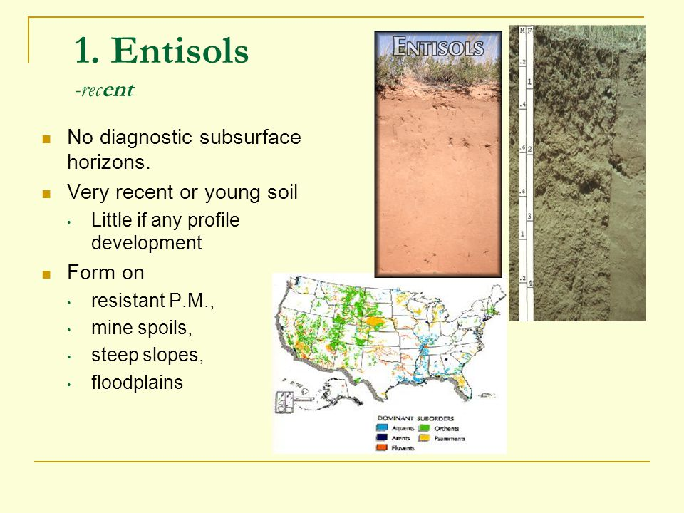 1. Entisols -recent No diagnostic subsurface horizons. Very recent or young soil Little if any profile development Form on resistant P.M., mine spoils