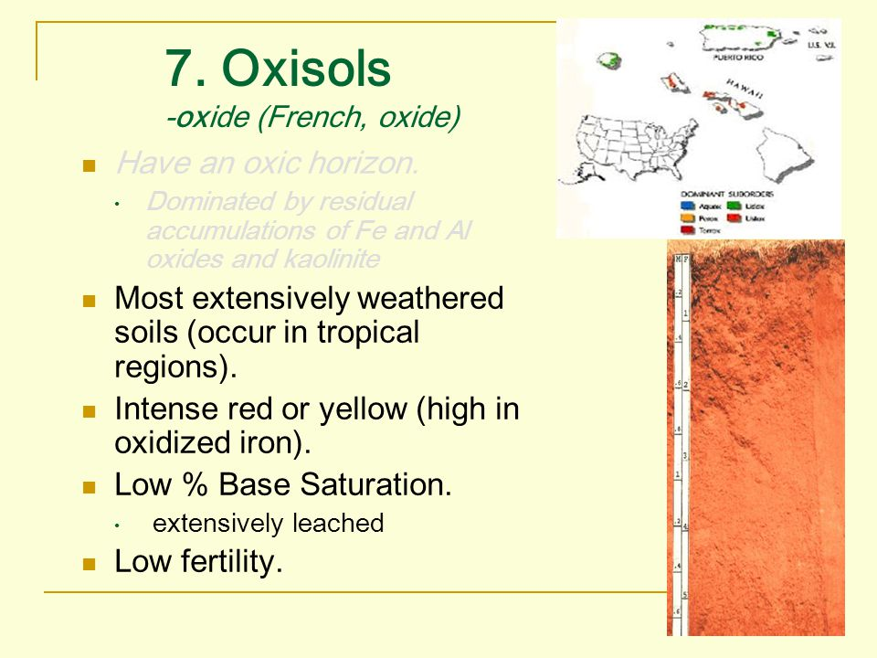 7. Oxisols -oxide (French, oxide) Have an oxic horizon. Dominated by residual accumulations of Fe and Al oxides and kaolinite Most extensively weather