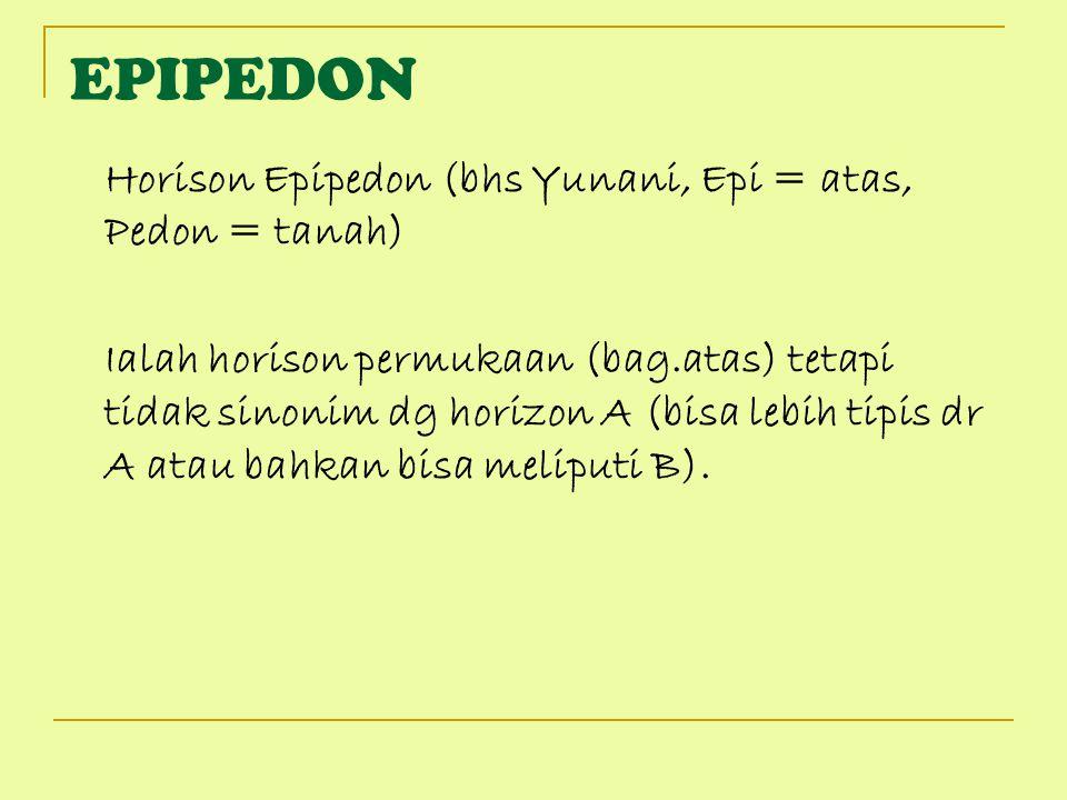 EPIPEDON Horison Epipedon (bhs Yunani, Epi = atas, Pedon = tanah) Ialah horison permukaan (bag.atas) tetapi tidak sinonim dg horizon A (bisa lebih tip