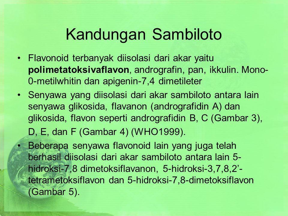 Kandungan Sambiloto Flavonoid terbanyak diisolasi dari akar yaitu polimetatoksivaflavon, andrografin, pan, ikkulin.