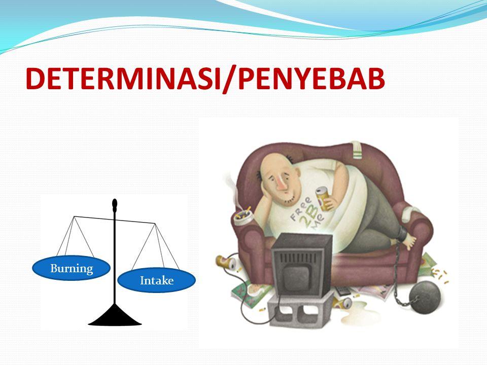 DETERMINASI/PENYEBAB Intake Burning