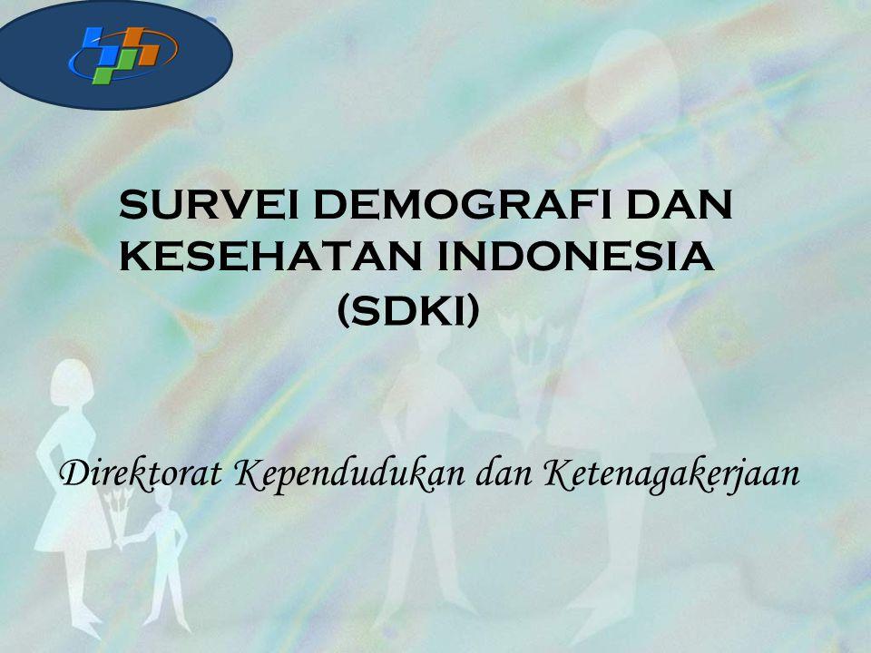 SURVEI DEMOGRAFI DAN KESEHATAN INDONESIA (SDKI) Direktorat Kependudukan dan Ketenagakerjaan