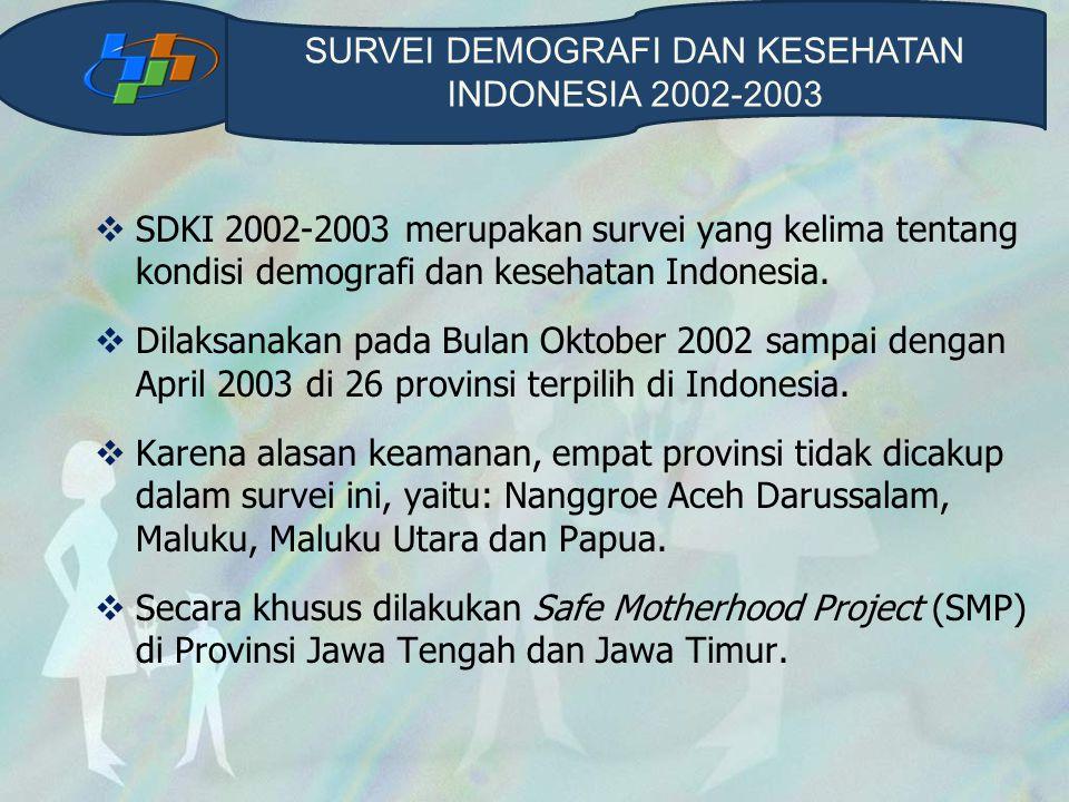  SDKI 2002-2003 merupakan survei yang kelima tentang kondisi demografi dan kesehatan Indonesia.  Dilaksanakan pada Bulan Oktober 2002 sampai dengan