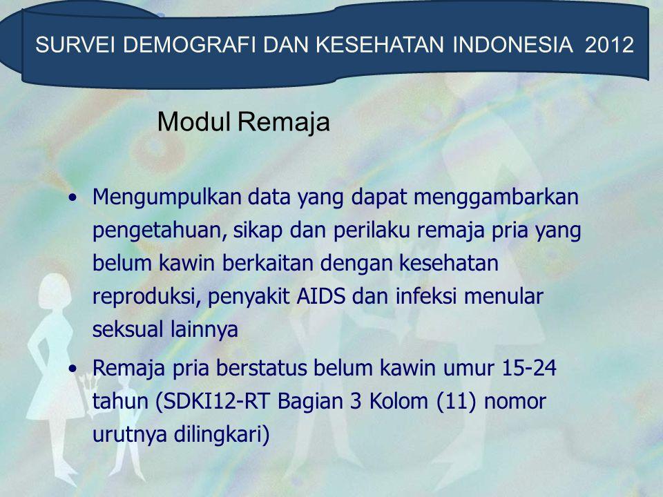 Modul Remaja Daftar SDKI12-RP terdiri dari : 1.Latar Belakang Responden 2.Pengetahuan dan Pengalaman Mengenai Sistem Reproduksi Manusia 3.Perkawinan dan Anak 4.Peran Keluarga, Sekolah, Masyarakat dan Media 5.Rokok, Minuman Beralkohol dan Obat-obatan Terlarang 6.HIV/AIDS 7.Pacaran dan Perilaku Seksual SURVEI DEMOGRAFI DAN KESEHATAN INDONESIA 2012