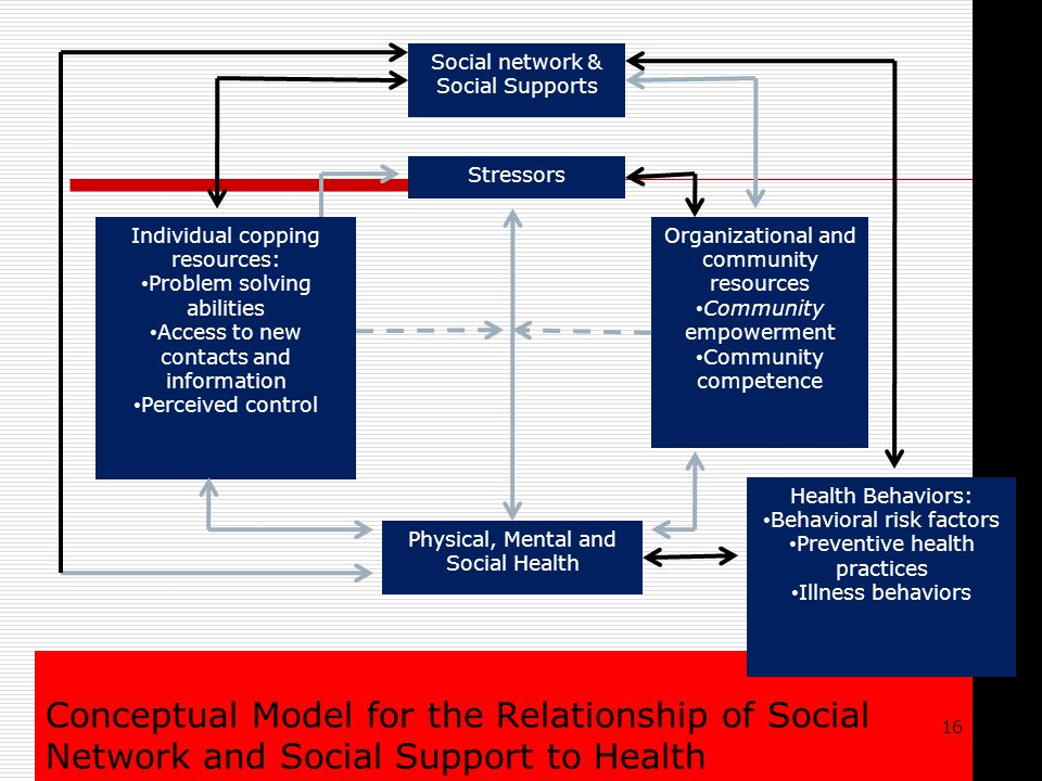 Conceptual Model for the Relationship of Social Network and Social Support to Health Individual copping resources: Problem solving abilities Access to new contacts and information Perceived control Organizational and community resources Community empowerment Community competence Social network & Social Supports Stressors Health Behaviors: Behavioral risk factors Preventive health practices Illness behaviors Physical, Mental and Social Health 16