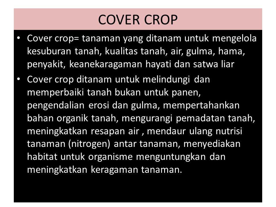 COVER CROP Cover crop= tanaman yang ditanam untuk mengelola kesuburan tanah, kualitas tanah, air, gulma, hama, penyakit, keanekaragaman hayati dan satwa liar Cover crop ditanam untuk melindungi dan memperbaiki tanah bukan untuk panen, pengendalian erosi dan gulma, mempertahankan bahan organik tanah, mengurangi pemadatan tanah, meningkatkan resapan air, mendaur ulang nutrisi tanaman (nitrogen) antar tanaman, menyediakan habitat untuk organisme menguntungkan dan meningkatkan keragaman tanaman.