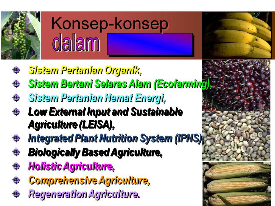 PERTANIAN KONVENSIONAL Praktik Usaha Tani dengan Kecenderungan pada pendekatan konsep kimia tanah sebagai dampak Revolusi Hijau ( varietas unggul, pupuk berimbang) penurunan kualitas kesuburan tanah.