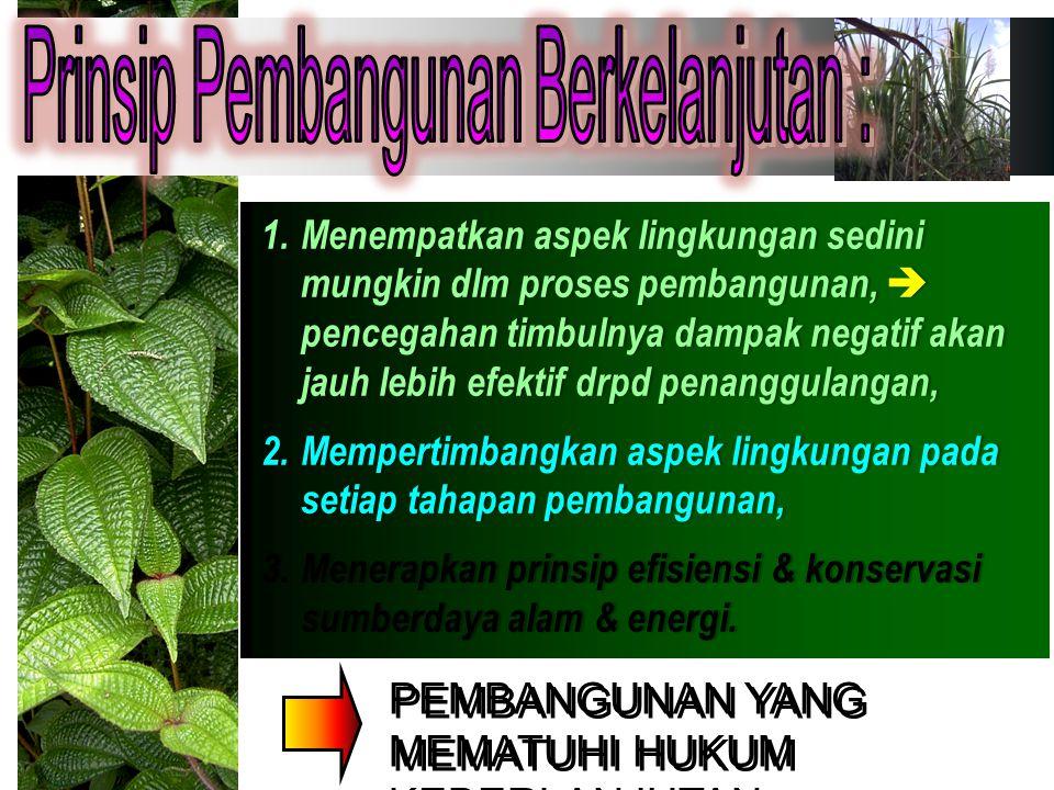 TANAMAN SELA Percampuran antara tanaman tahunan dan tanaman semusim.