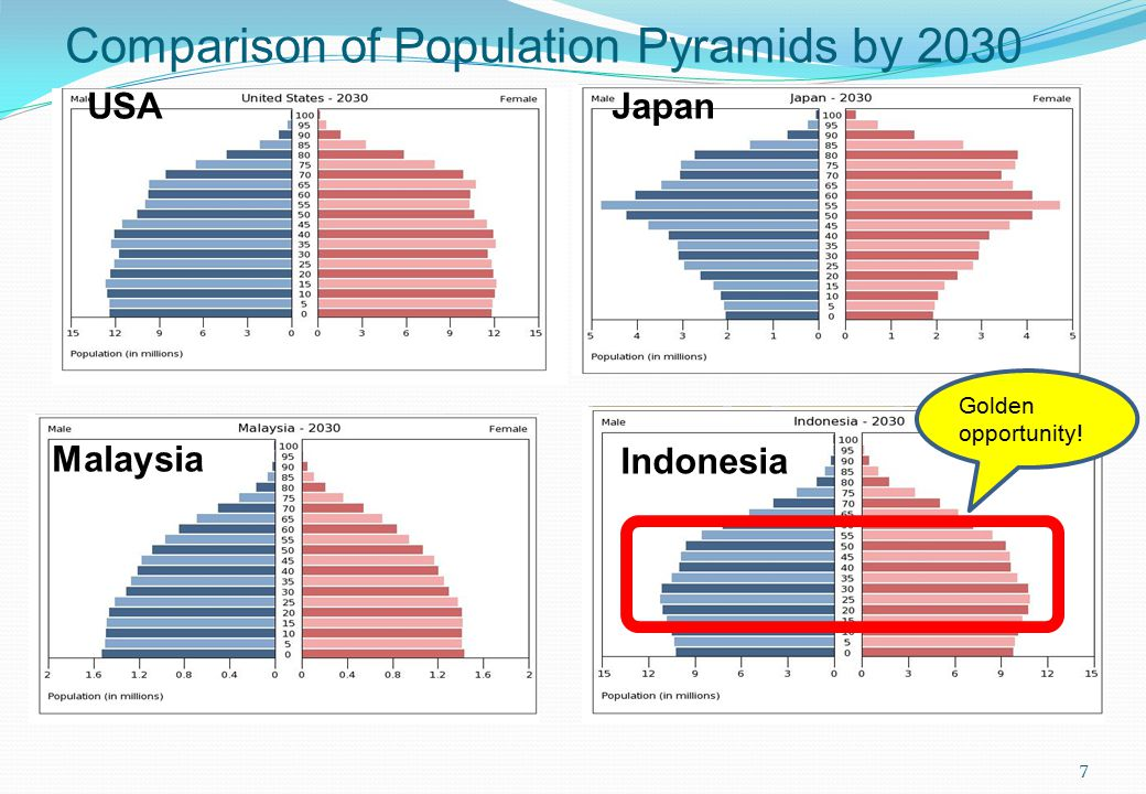 Comparison of Population Pyramids by 2030 Indonesia Malaysia USAJapan Golden opportunity! 7