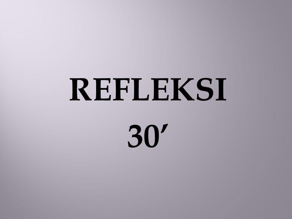 REFLEKSI 30'