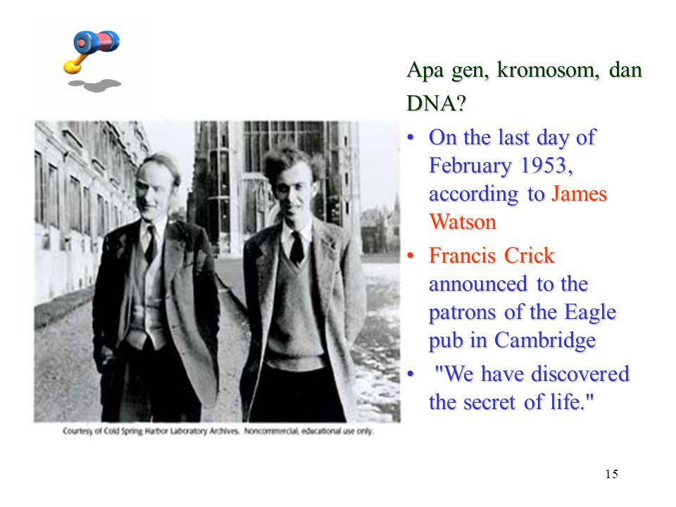 15 Apa gen, kromosom, dan DNA? On the last day of February 1953, according to James WatsonOn the last day of February 1953, according to James Watson