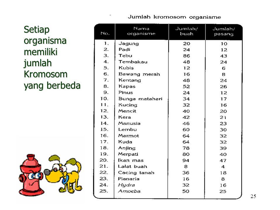 25 Setiap organisma memiliki jumlah Kromosom yang berbeda