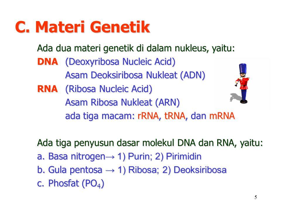 5 C. Materi Genetik Ada dua materi genetik di dalam nukleus, yaitu: DNA (Deoxyribosa Nucleic Acid) Asam Deoksiribosa Nukleat (ADN) RNA (Ribosa Nucleic