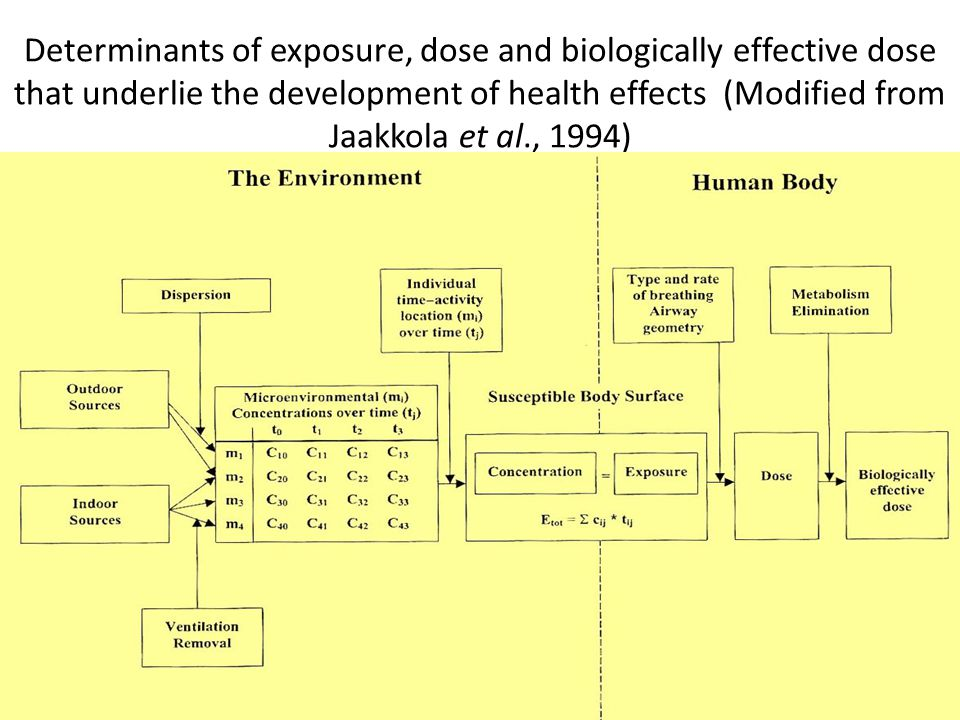 3 Determinants of exposure, dose and biologically effective dose that underlie the development of health effects (Modified from Jaakkola et al., 1994)