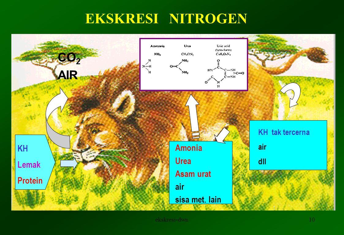 9 Hiperosmotik AIR SOLUT SELURUH PERMUKAAN IMPERMEABEL .