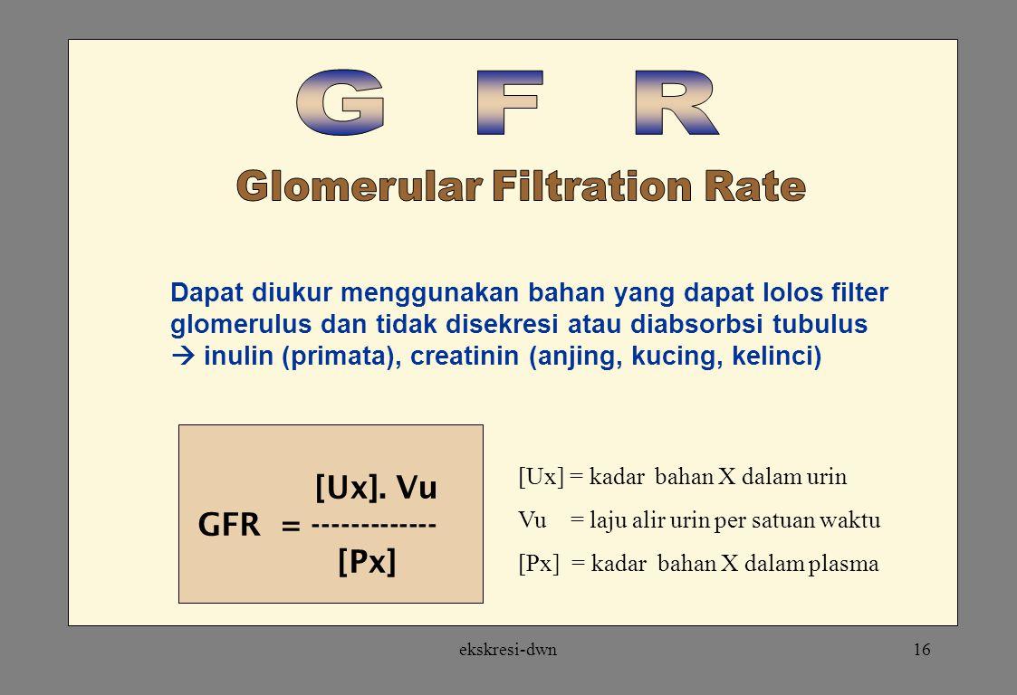 ekskresi-dwn15 Kapiler glomerulus Tekanan darah protein LUMEN KAPILERURINARY SPACE FILTRAT GLOMERULUS