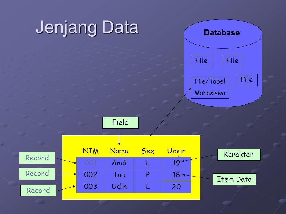 Jenjang Data Andi Nama 19 UmurSexNIM Ina002P 003 18 001L UdinL 20 Karakter Field Record Database File/Tabel Mahasiswa File Item Data Record