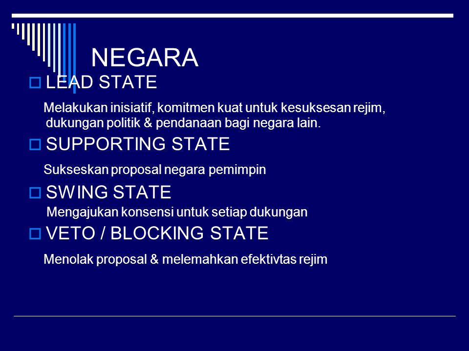 NEGARA  LEAD STATE Melakukan inisiatif, komitmen kuat untuk kesuksesan rejim, dukungan politik & pendanaan bagi negara lain.