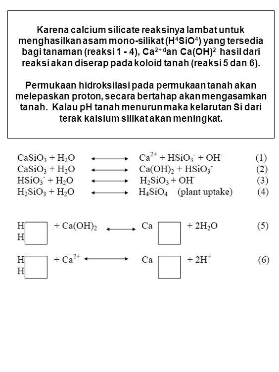 Karena calcium silicate reaksinya lambat untuk menghasilkan asam mono-silikat (H 4 SiO 4 ) yang tersedia bagi tanaman (reaksi 1 - 4), Ca 2+ d an Ca(OH) 2 hasil dari reaksi akan diserap pada koloid tanah (reaksi 5 dan 6).