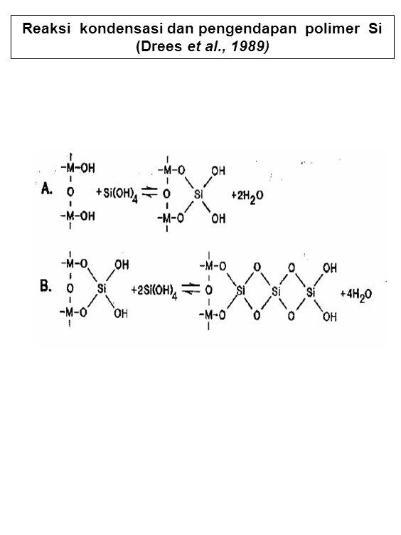 Reaksi kondensasi dan pengendapan polimer Si (Drees et al., 1989)