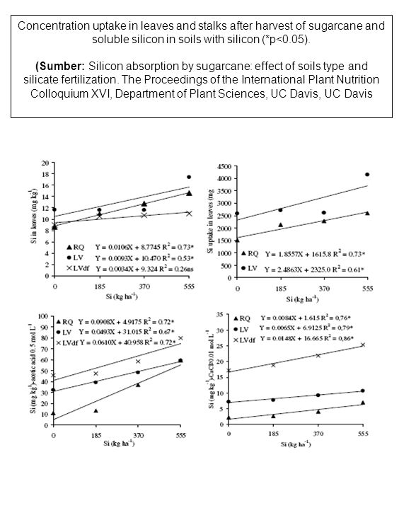 Concentration uptake in leaves and stalks after harvest of sugarcane and soluble silicon in soils with silicon (*p<0.05).