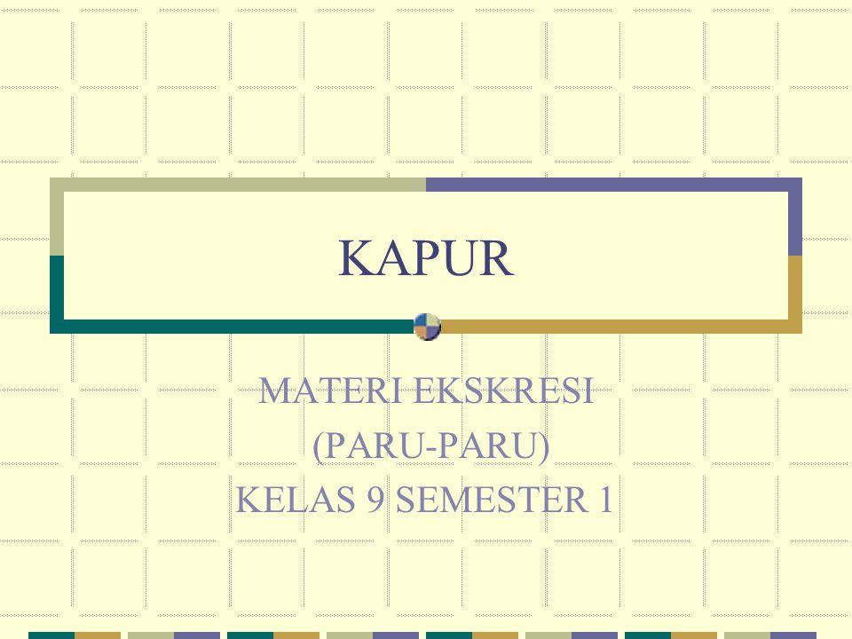 KAPUR MATERI EKSKRESI (PARU-PARU) KELAS 9 SEMESTER 1
