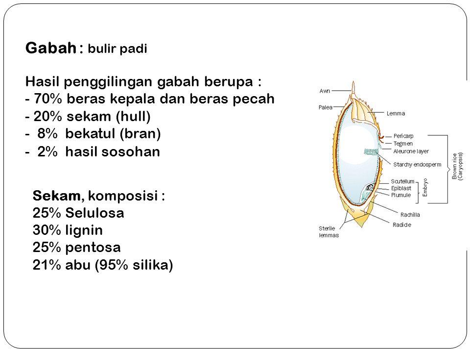 Gabah : bulir padi Hasil penggilingan gabah berupa : - 70% beras kepala dan beras pecah - 20% sekam (hull) - 8% bekatul (bran) - 2% hasil sosohan Seka