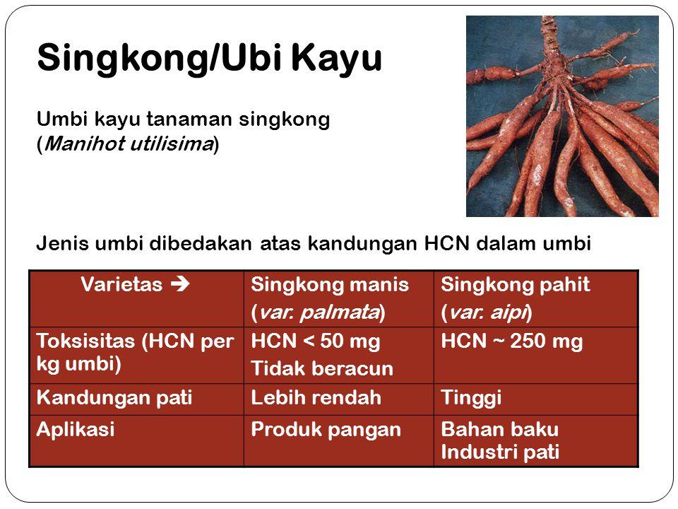 Varietas  Singkong manis (var. palmata) Singkong pahit (var. aipi) Toksisitas (HCN per kg umbi) HCN < 50 mg Tidak beracun HCN ~ 250 mg Kandungan pati
