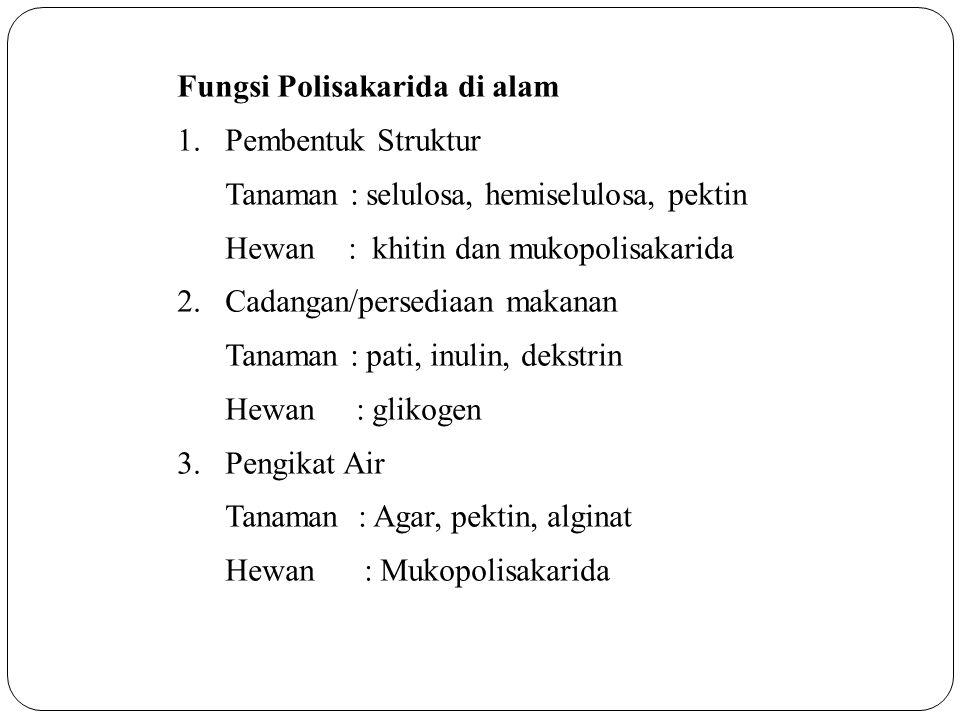 Fungsi Polisakarida di alam 1.Pembentuk Struktur Tanaman : selulosa, hemiselulosa, pektin Hewan : khitin dan mukopolisakarida 2.Cadangan/persediaan ma