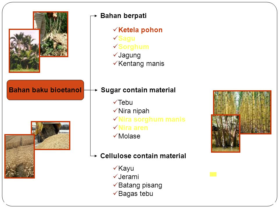 Bahan baku bioetanol Bahan berpati Sugar contain material Cellulose contain material Ketela pohon Sagu Sorghum Jagung Kentang manis Tebu Nira nipah Ni