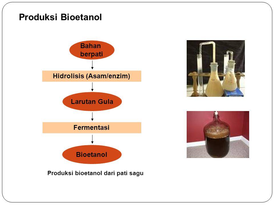 Produksi Bioetanol Bahan berpati Hidrolisis (Asam/enzim) Larutan Gula Fermentasi Bioetanol Produksi bioetanol dari pati sagu