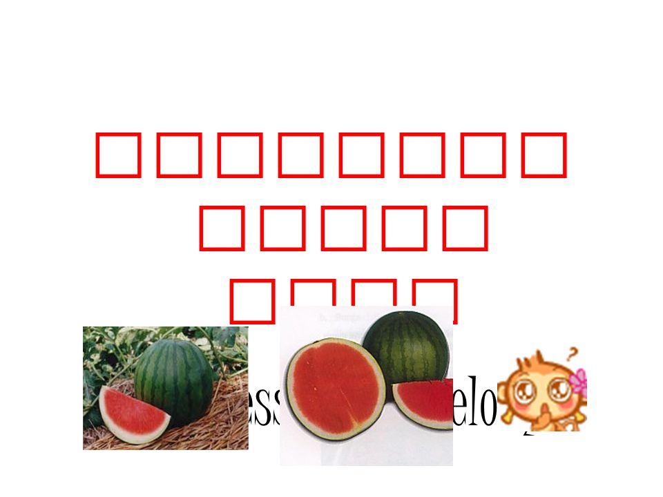 Semangka Tanpa Biji (Seedless Watermelon)