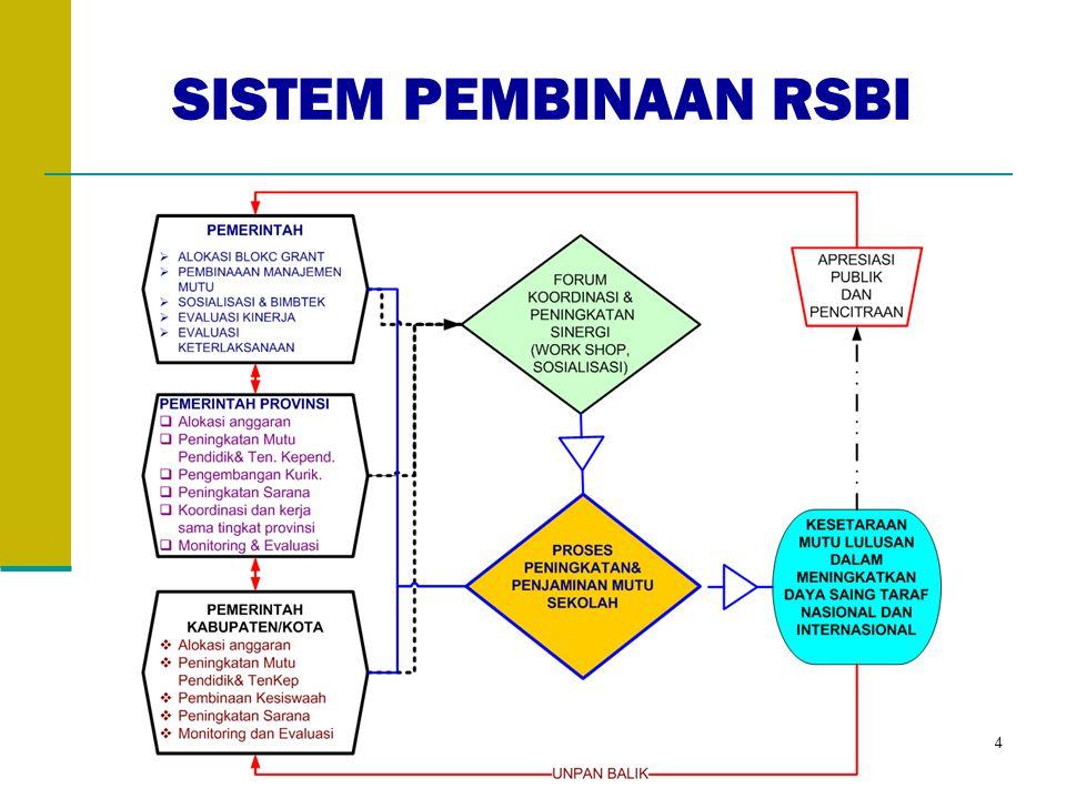 SISTEM PEMBINAAN RSBI 4