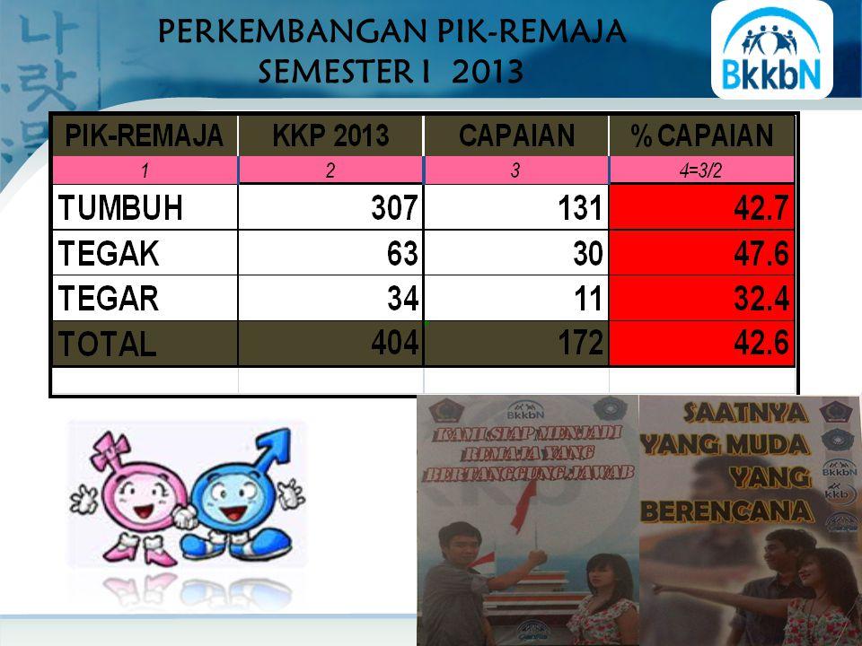 PERKEMBANGAN PIK-REMAJA SEMESTER I 2013