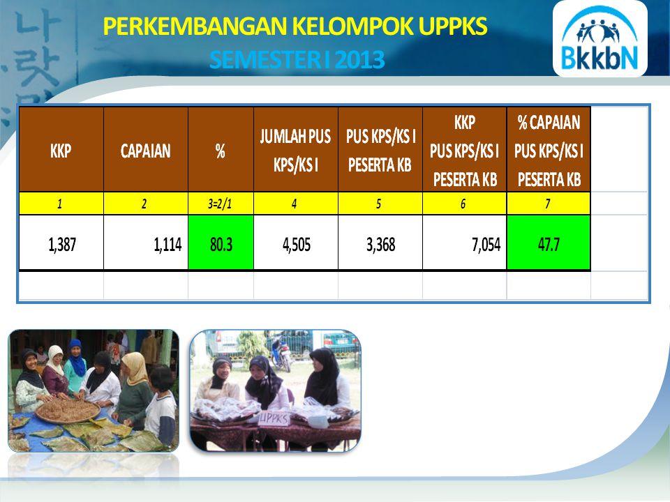 PERKEMBANGAN KELOMPOK UPPKS SEMESTER I 2013