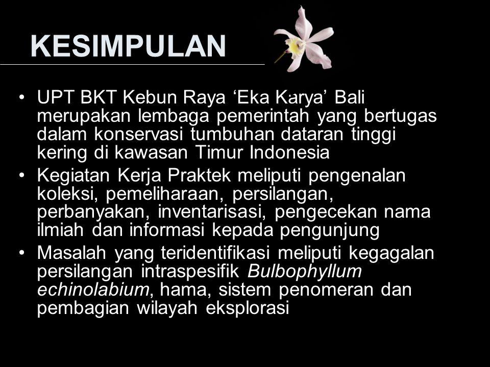 KESIMPULAN UPT BKT Kebun Raya 'Eka Karya' Bali merupakan lembaga pemerintah yang bertugas dalam konservasi tumbuhan dataran tinggi kering di kawasan T