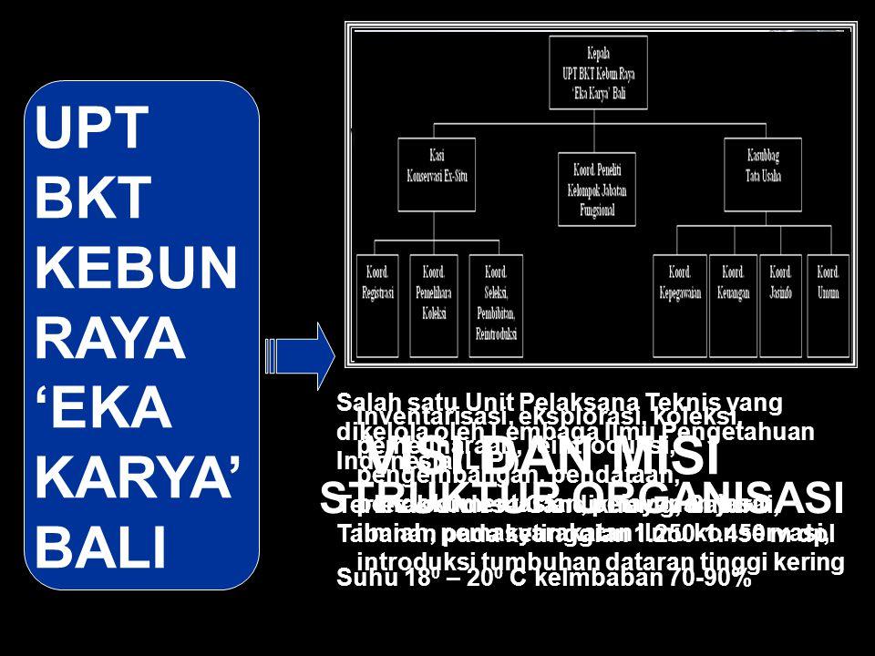 UPT BKT KEBUN RAYA 'EKA KARYA' BALI Salah satu Unit Pelaksana Teknis yang dikelola oleh Lembaga Ilmu Pengetahuan Indonesia (LIPI) Terletak di desa Can