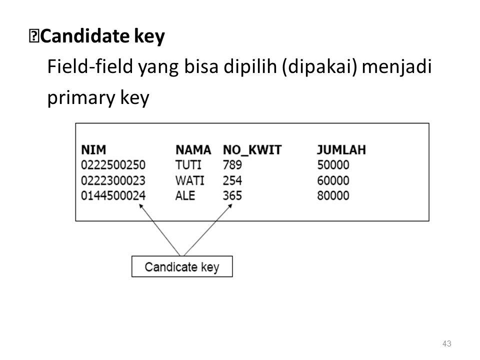 ◆ Candidate key Field-field yang bisa dipilih (dipakai) menjadi primary key 43