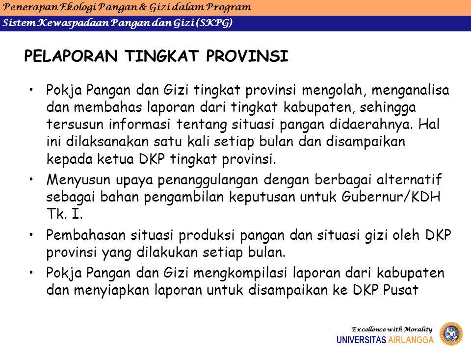 PELAPORAN TINGKAT PROVINSI Pokja Pangan dan Gizi tingkat provinsi mengolah, menganalisa dan membahas laporan dari tingkat kabupaten, sehingga tersusun