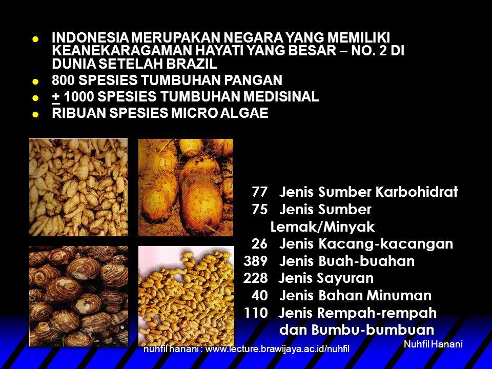 PERUBAHAN KONDISI GLOBAL YANG TIDAK MENENTU MENUNTUT KETAHANAN PANGAN YANG BERKELANJUTAN DI INDONESIA nuhfil hanani : www.lecture.brawijaya.ac.id/nuhf