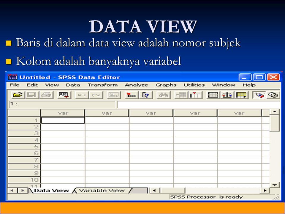 DATA VIEW Baris di dalam data view adalah nomor subjek Baris di dalam data view adalah nomor subjek Kolom adalah banyaknya variabel Kolom adalah banyaknya variabel