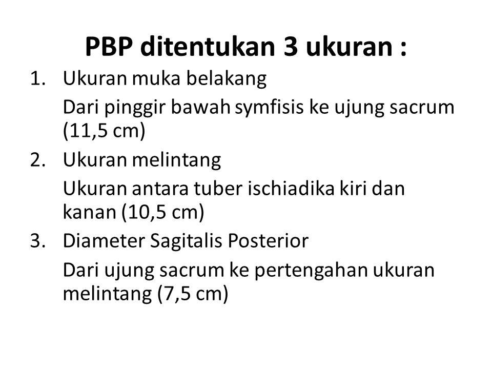 PBP ditentukan 3 ukuran : 1.Ukuran muka belakang Dari pinggir bawah symfisis ke ujung sacrum (11,5 cm) 2.Ukuran melintang Ukuran antara tuber ischiadi