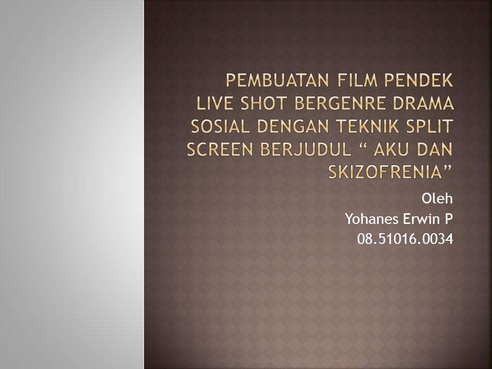 SKIZOFRENIA DEWASA DINI MEDIA PERKEMBANGAN DI INDONESIA PERILAKU ABNORMAL PERKEMBANGAN DEWASA DINI RENTAN TERKENA SKIZOFRENIA FILM PENDEK LIVE SHOT GENRE DRAMA SOSIALTEKNIK SPLIT SCREEN
