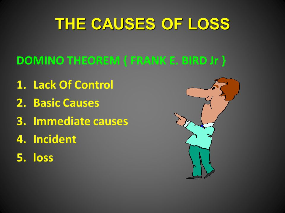 THE CAUSES OF LOSS DOMINO THEOREM { FRANK E.