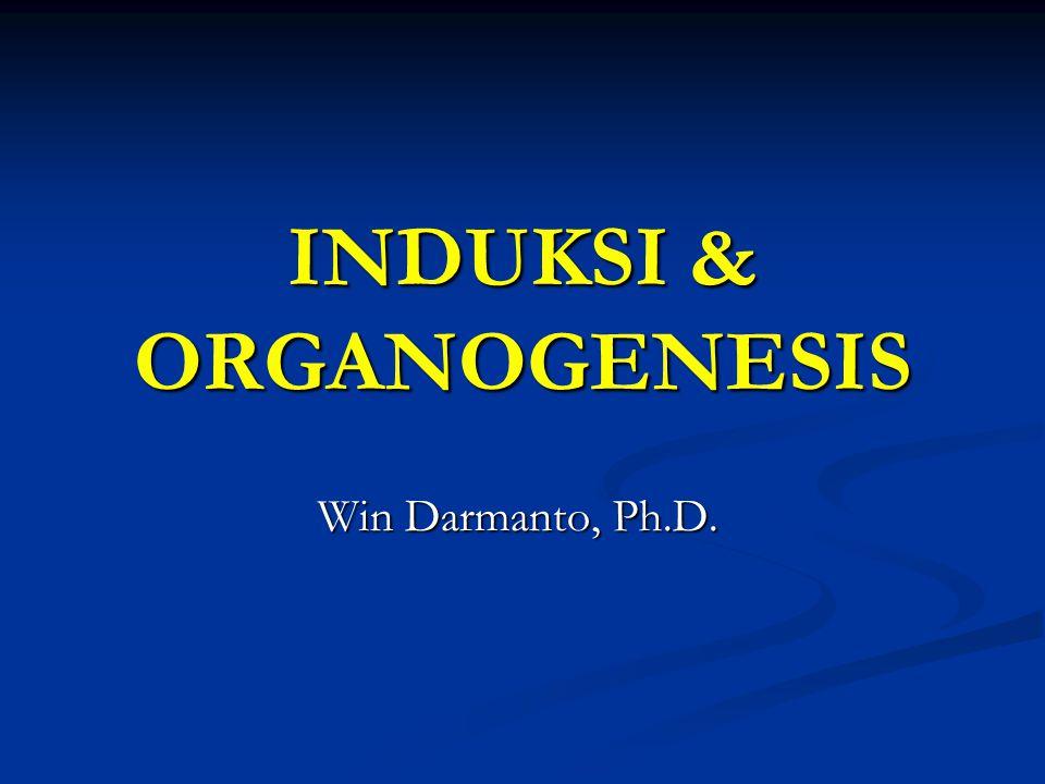 INDUKSI & ORGANOGENESIS Win Darmanto, Ph.D.