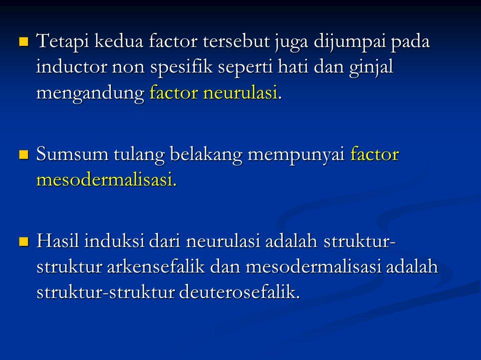 Tetapi kedua factor tersebut juga dijumpai pada inductor non spesifik seperti hati dan ginjal mengandung factor neurulasi. Tetapi kedua factor tersebu
